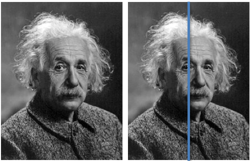 Einstein Left-brained